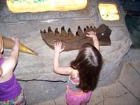 Dinosaur_bone_2
